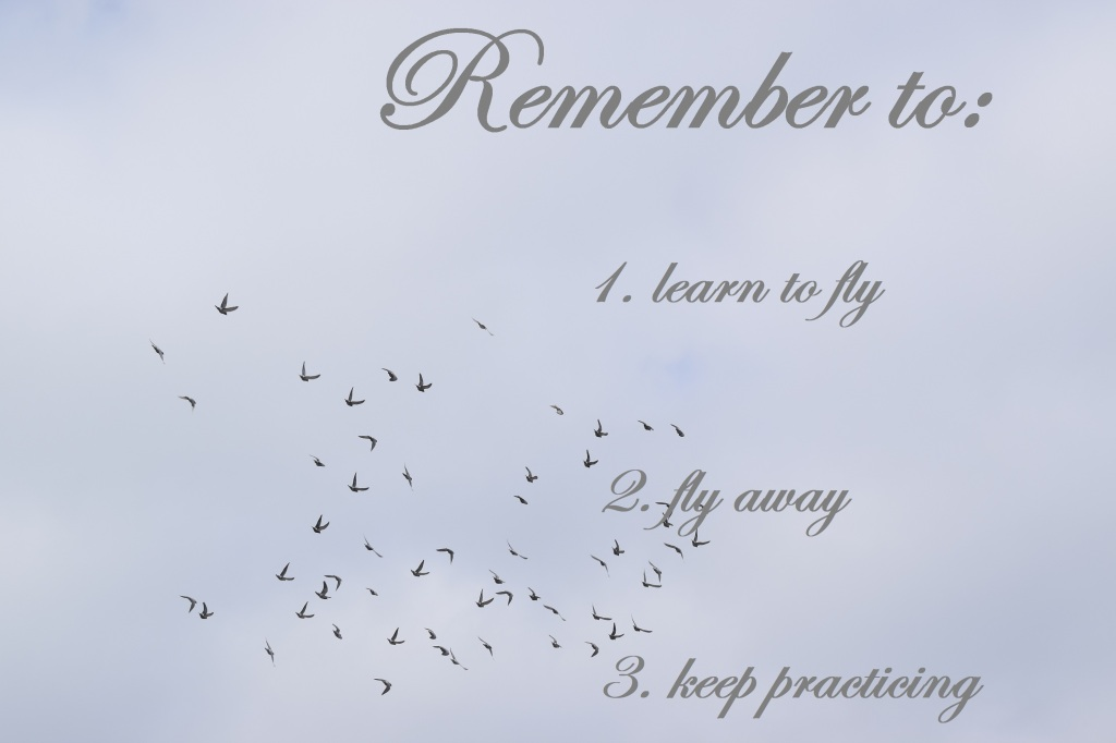 Remember to: 1. learn to fly 2. fly away 3. keep practicing